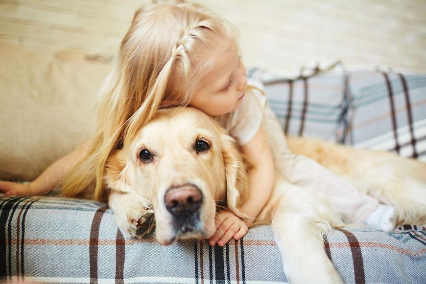 Alergia na psy występuje bardzo często