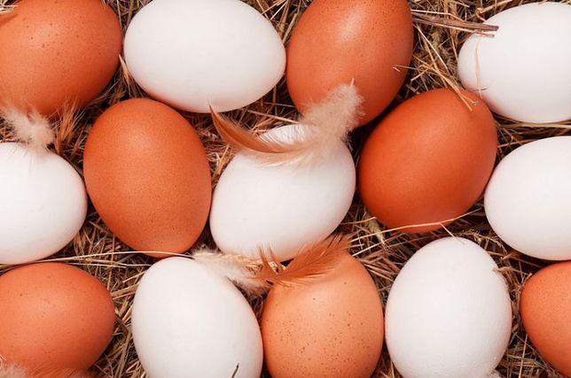 Jajka kurze będą droższe.