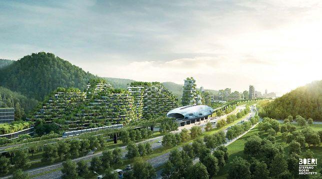 """Chińczycy rozpoczęli pracę nad pierwszym na świecie """"leśnym miastem"""""""