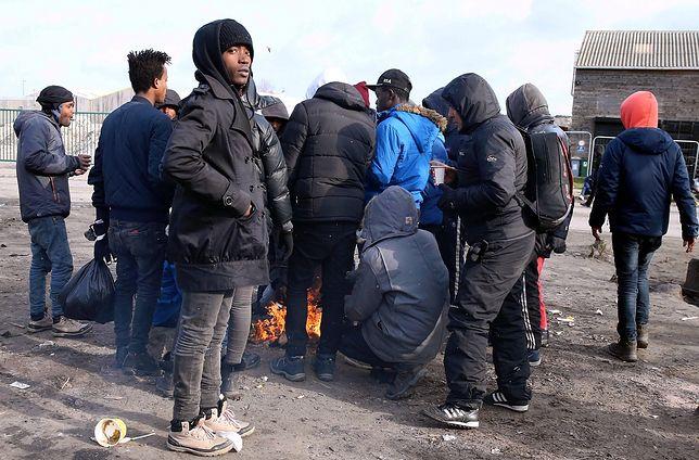 Uchodźcy z Afryki koczujący w Calais. Ich marzeniem jest przedostanie się do Wielkiej Brytanii