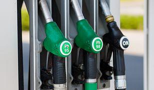 Ceny paliw przy autostradach są o kilkadziesiąt groszy wyższe