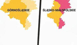 """Zmiana nazwy województwa śląskiego nie wystarczy. """"Trzeba zmienić granice"""""""