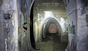 Królestwo Nosferatu. Międzyrzecki Rejon Umocniony, legendarna podziemna fortyfikacja III Rzeszy
