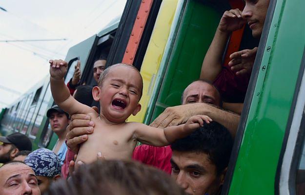 Zamieszki przed dworcem w Budapeszcie. Imigranci przerwali policyjną blokadę