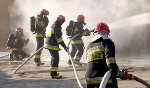 Strażacy opanowali sytuację zanim na miejsce dojechały kolejne jednostki