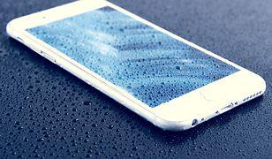 iPhone 6s przetrwał upadek z samolotu i został odnaleziony po 13 miesiącach. Wciąż działał!