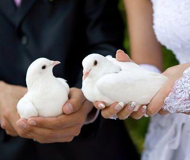 Trendy ślubne: gołębie na ceremonii