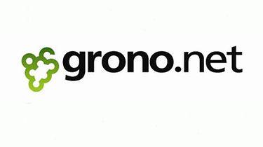Pierwszy portal społecznościowy: Grono.net