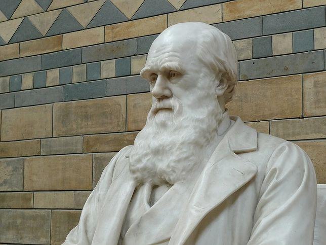 Karol Darwin, ojciec teorii ewolucji