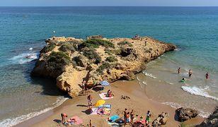 Hiszpania - turyści uratowali żółwie w Tarragonie