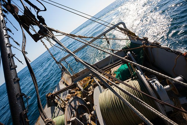Rybacy narzekają na ciepłą wodę w Bałtyku, ale plażowicze się cieszą.