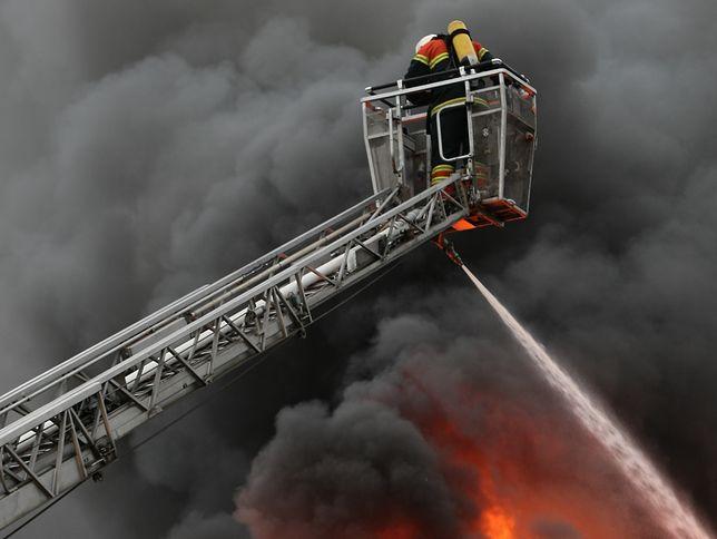 Strażacy gasili pojazd i bronili przed ogniem inne auta.