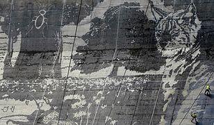Mural na zaporze wodnej w Solinie