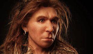 Geny odziedziczone po neandertalczykach mogą przyczyniać się do ryzyka poważnych powikłań po COVID-19