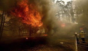 Australia. Znów rozprzestrzenia się ogień. Zagrożenie rośnie