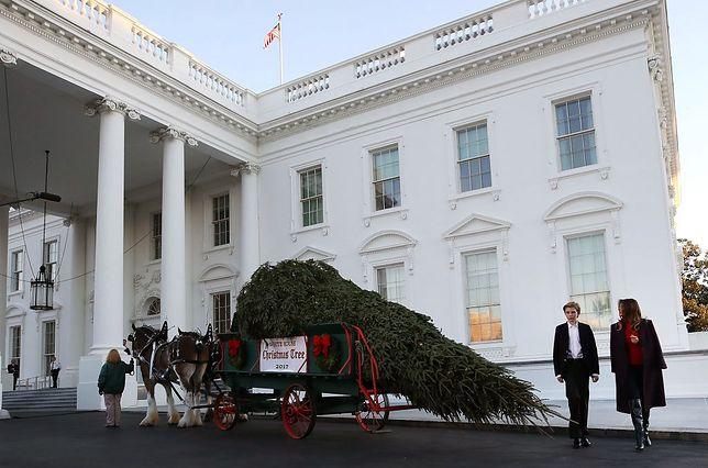 <<enter caption here>> on November 20, 2017 in Washington, DC.