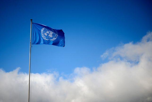 Na fladze ONZ widnieje wieniec z gałązek oliwnych - symbol pokoju