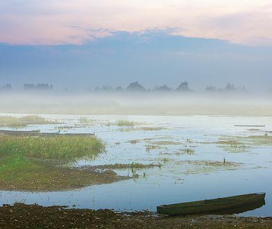 """""""Choć nawet po tak suchym roku w przyrodzie nie można jeszcze wieszczyć katastrofy ekologicznej, to jednak są spore obawy i oczekiwania"""""""