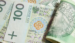 Można uzyskać pieniądze na walkę z barszczem Sosnowskiego
