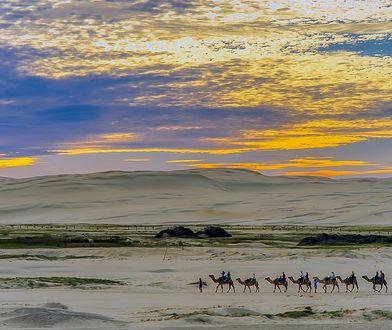 Egipt to udane wakacje za granicą: pewna pogoda, piękne plaże, ciepłe morze i ciekawe wycieczki