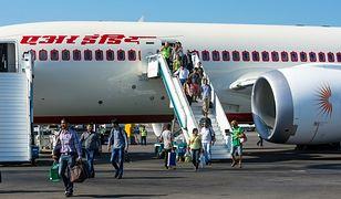 Szczury na pokładzie Dreamlinera. Air India ma ogromne problemy z gryzoniami