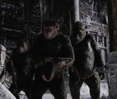 """""""Wojna o planetę małp: kontynuacja przeboju w nowym zwiastunie [TYLKO U NAS]"""
