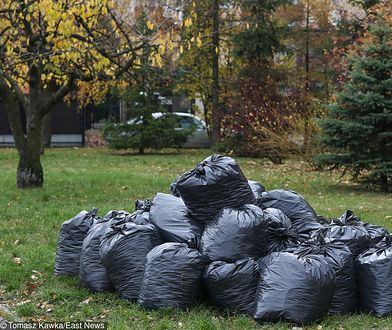 Jeśli w gminie prowadzona jest zbiórka odpadów, najlepiej po prostu oddać liście