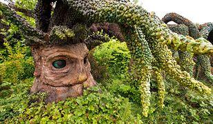 Wizyta w Magicznych Ogrodach to nie lada atrakcja dla rodzin z dziećmi