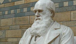 Karol Darwin - twórca teorii ewolucji, zgodnie z którą wszystkie gatunki pochodzą od wcześniejszych form.