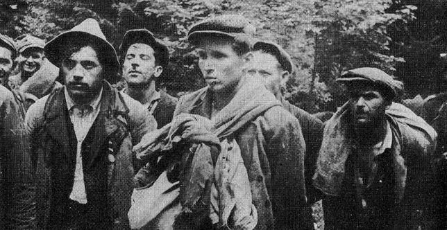 Pojmani członkowie UPA, 1946 r.