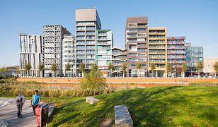 Nowoczesna i rozplanowana stolica Lelystad nie przyciągnęła tylu mieszkańców, ilu pierwotnie zakładano