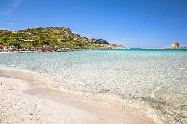Plaża La Pelosa, Stintino, Sardynia