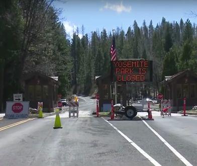Amerykanie są na kwarantannie. W Parku Narodowym Yosemite widać coraz więcej zwierząt