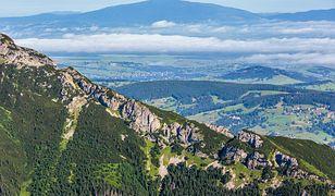 Tatry. Turyści zaskoczeni niebieskim ślimakiem