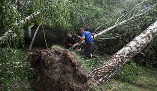 Burze nad Polską. Drzewo przewróciło się na namioty na kempingu