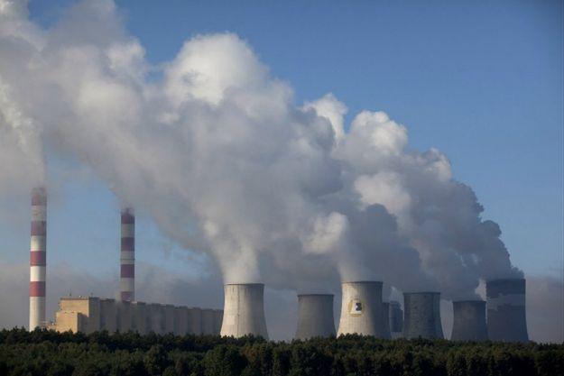 Sondaż CBOS: znacząca większość Polaków zaniepokojona stanem środowiska naturalnego w kraju
