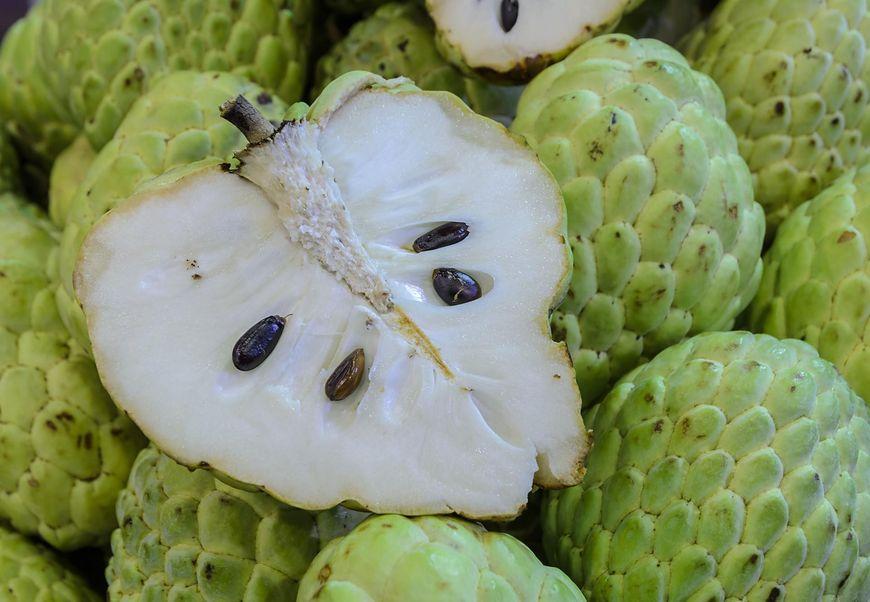 Nietypowy owoc