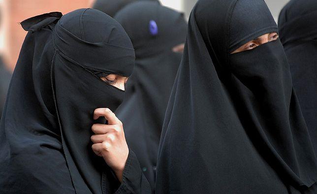 Tibi twierdzi, że muzułmanie nie asymilują się z Niemcami