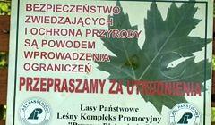 Puszcza Białowieska - popularne szlaki zamknięte dla turystów