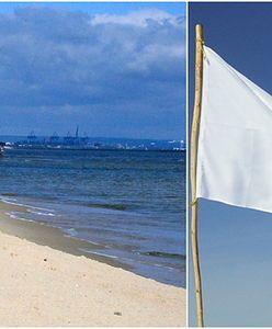 Argentyńczyk zgubił się w Gdańsku. Zrobił flagę, którą machał i wzywał pomoc