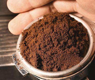 5 sposobów na wykorzystanie fusów z kawy. Mogą zdziałać cuda