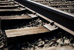 PKP Intercity kupi pociągi od Newagu za 1,6 mld zł