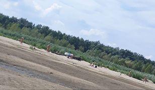 Warszawska plaża nudystów