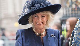 Księżna Camilla przyjęła szczepionkę AstraZeneca. Jak się czuje żona Karola?