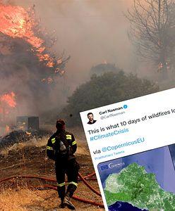 Grecja. Skutki pożarów widoczne na zdjęciu satelitarnym. Żywioł strawił ogromny obszar
