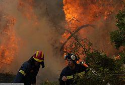Pożary w Europie. W Grecji wciąż 500 pożarów do ugaszenia. Premier przeprasza