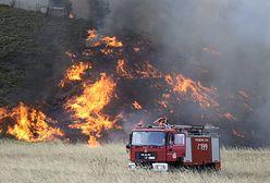 Grecja. 10-kilometrowy pas ognia. Są 54 nowe pożary