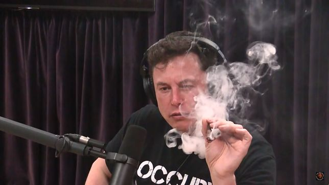 "Elon Musk pali marihuanę podczas podcastu Joe Rogana - najdroższy ""joint"" w historii USA."