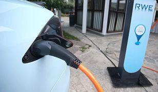 Holenderscy parlamentarzyści chcą zakazu sprzedaży samochodów spalinowych