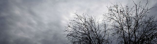 Meteorolodzy ostrzegają krakowian: uważajcie na silny wiatr